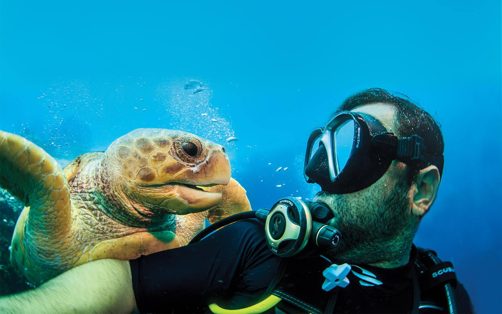 man scuba diving with sea turtle