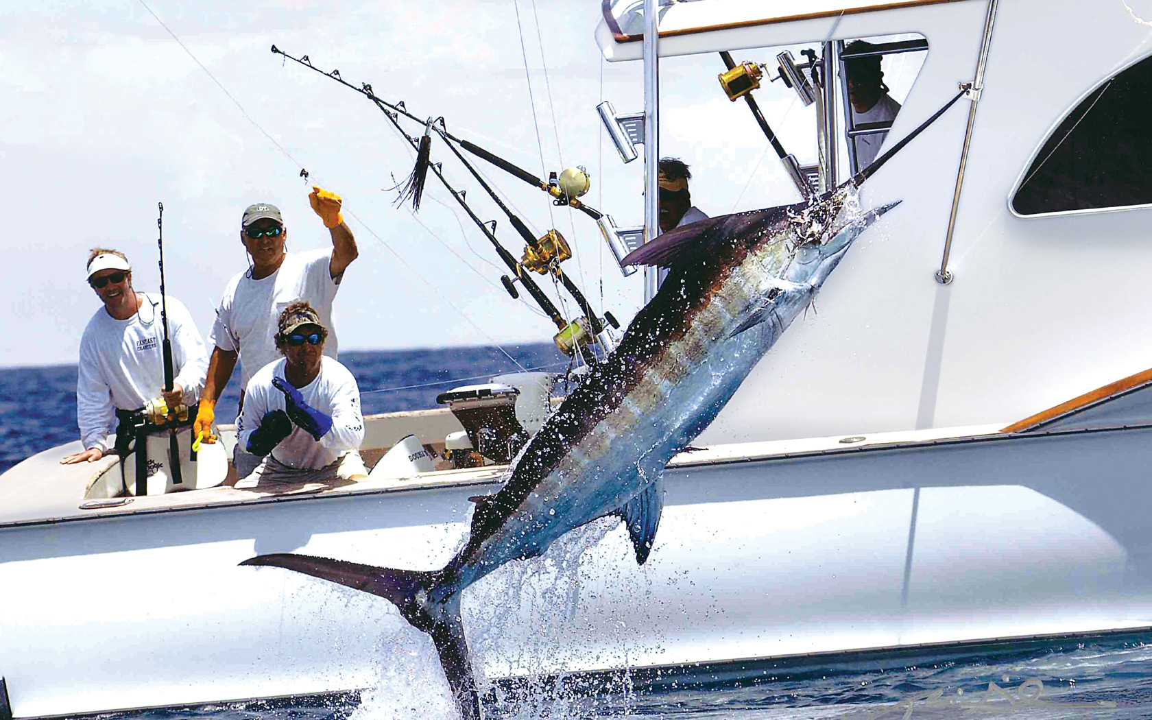 Out islands photo gallery the out islands of the bahamas for Bimini fishing charters