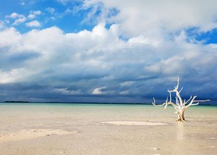 BOI Harbour Island Beach