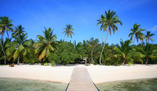 Blog | 5 reasons the eco-tourist will love Tiamo Resort | MYOUTISLANDS.COM