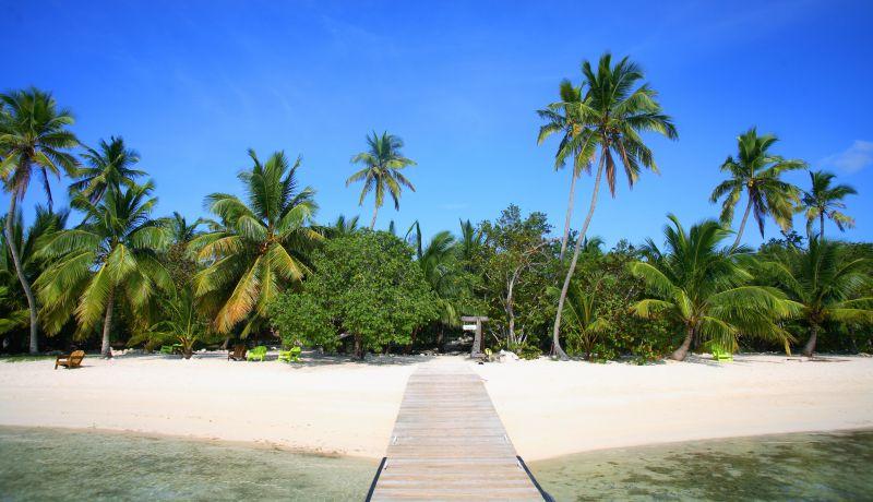 Blog | 5 reasons the eco-tourist will love Tiamo Resort | caribbeantravel.com