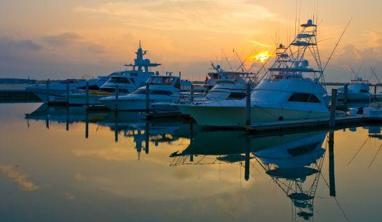 Blog | 5 Best Experiences to do in Bimini | MYOUTISLANDS.COM