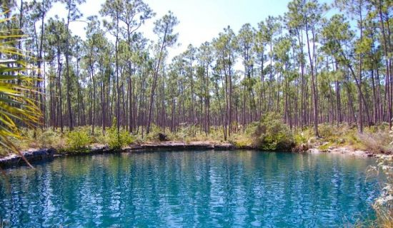 Blog   Things to do at a Bahamian blue hole   MYOUTISLANDS.COM