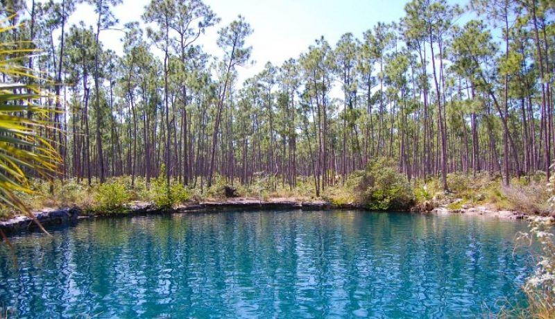 Blog | Things to do at a Bahamian blue hole | caribbeantravel.com