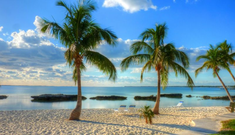 Blog | What Makes the Abaco Islands So Distinctive | caribbeantravel.com