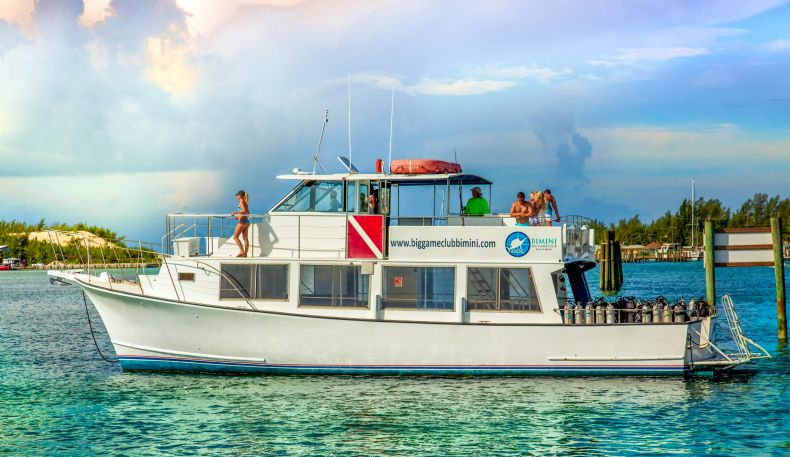 Bimini big game club resort marina the out islands of for Nassau fishing charters