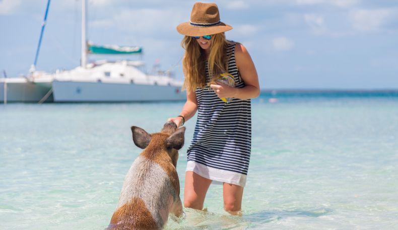 Green Turtle Club Resort and Marina | myoutislands.com