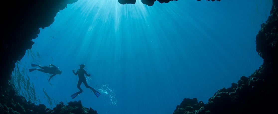 Blue Reef Room Rates