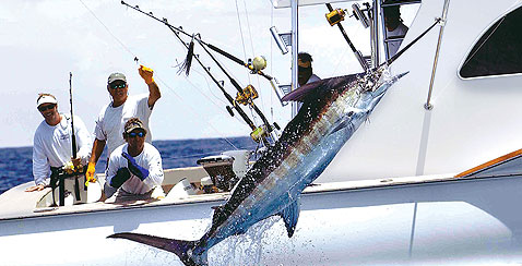 Deep sea fishing the out islands of the bahamas for Nassau fishing charters