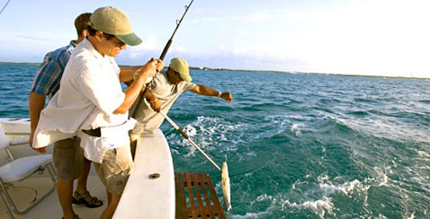 Sport fishing in bimini the out islands of the bahamas for Nassau fishing charters